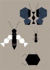 http://milimbo.com/files/gimgs/th-96_9_70_insects3.jpg